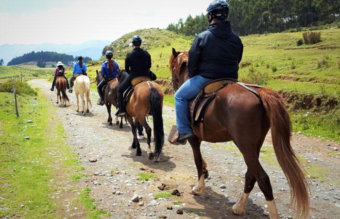 HorseBack Cusco